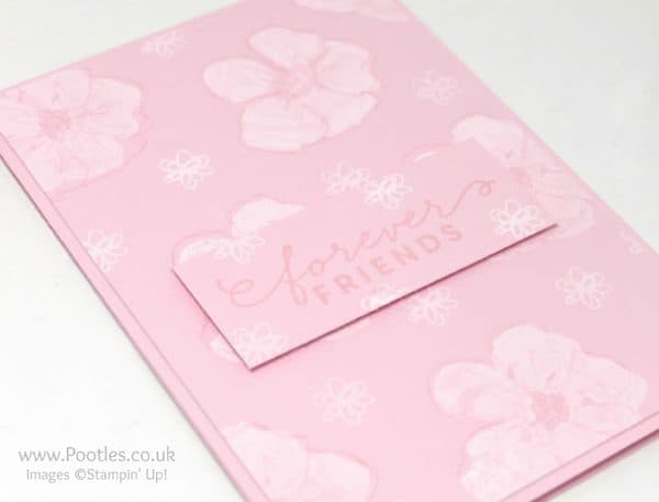Stampin' Up! Demonstrator Pootles - Chalk Ink on Penned & Painted First Sight