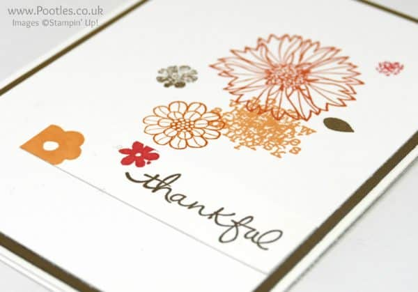 Stampin' Up! Demonstrator Pootles - Single Layer Touches of Texture Profile