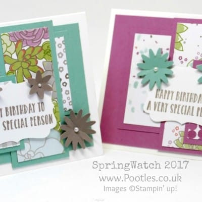 Pootles SpringWatch 2017 Oh So Succulent Customer Thank You Card Kit