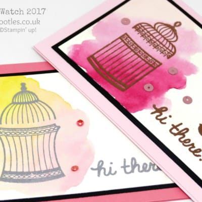 Pootles SpringWatch 2017 Watercolouring with Heat Embossing