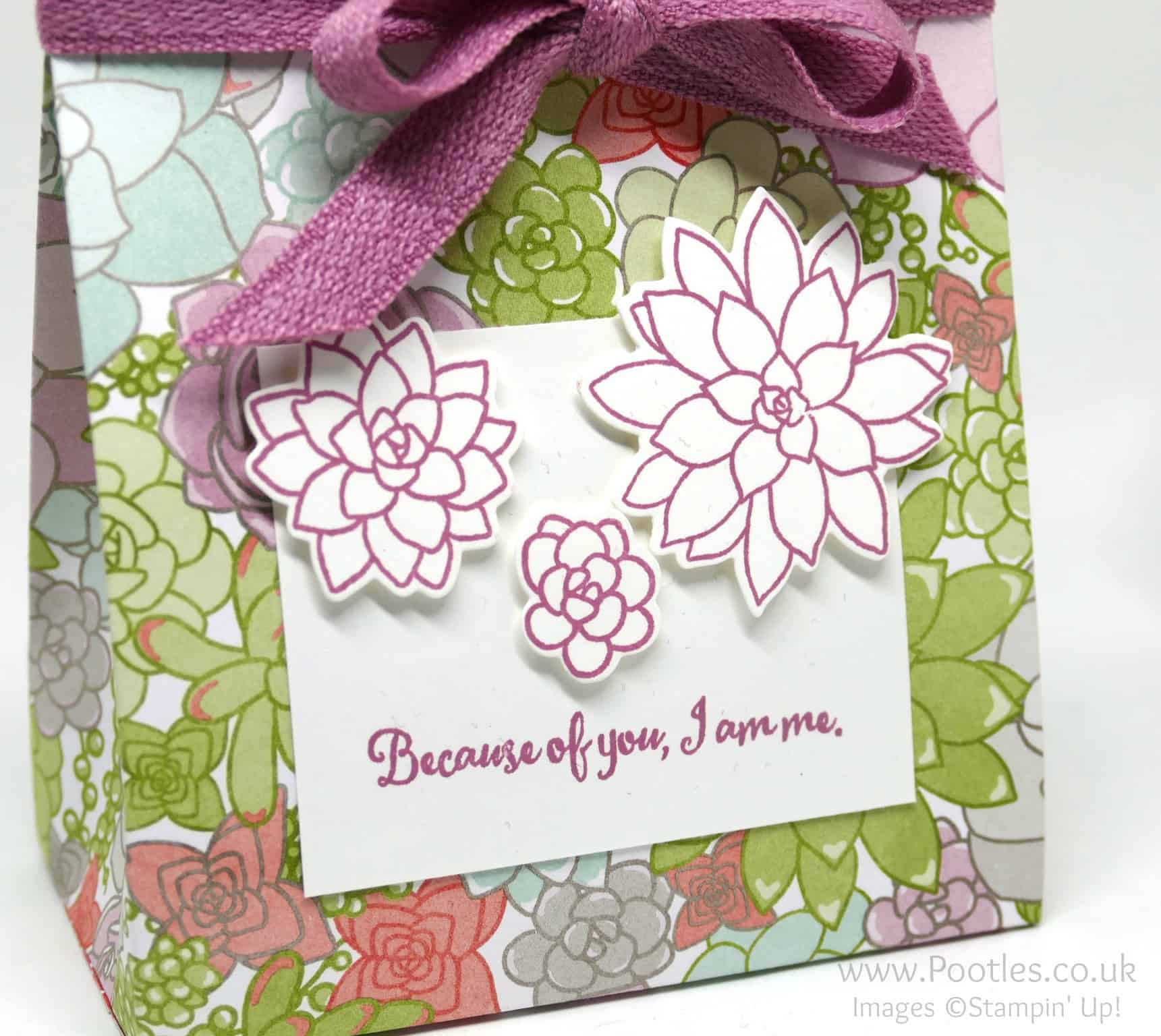 Stampin' Up! Succulent Garden Suite Bag