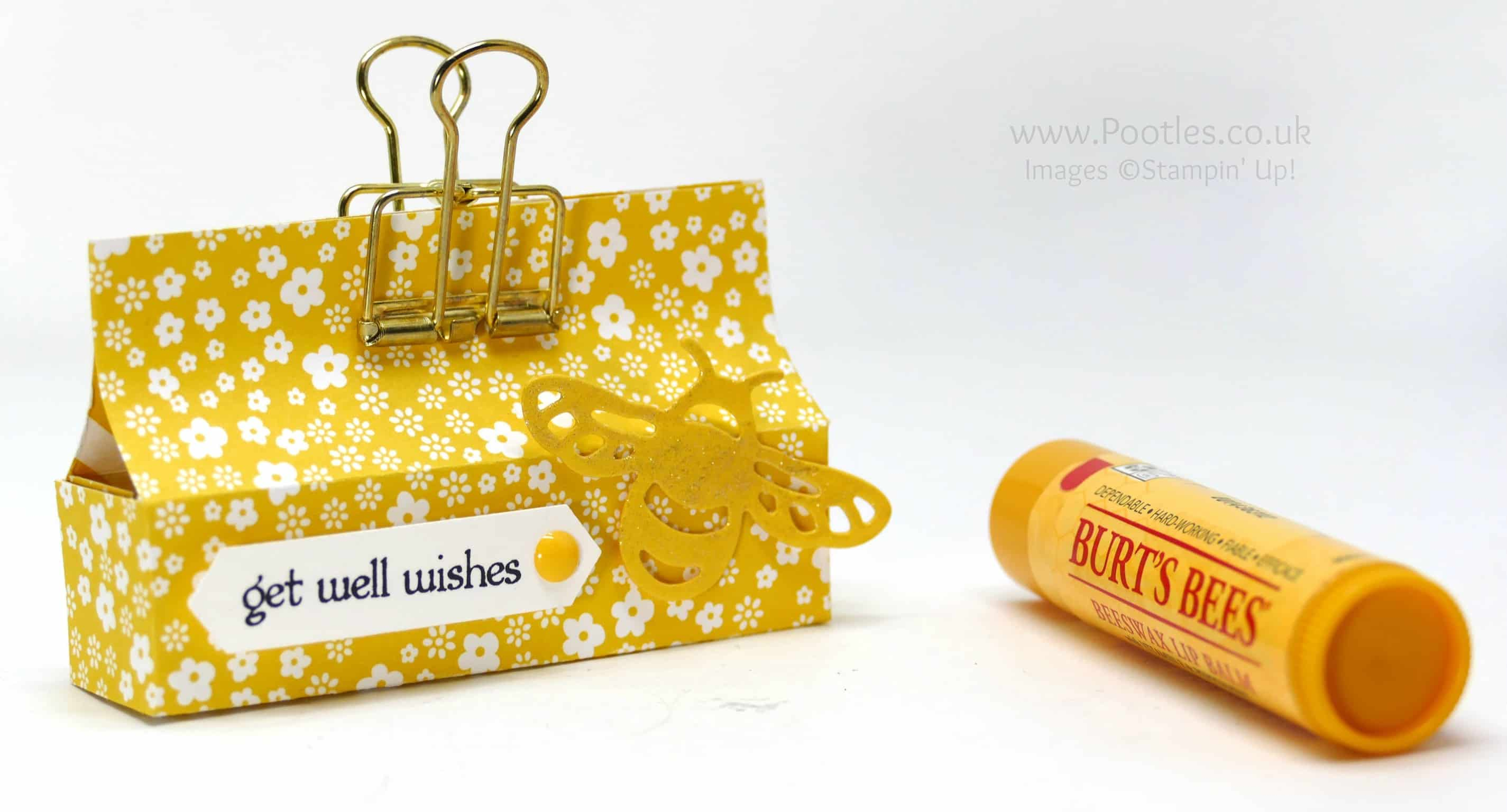 Burts Bees Balm Box with Cute Bee Detail!