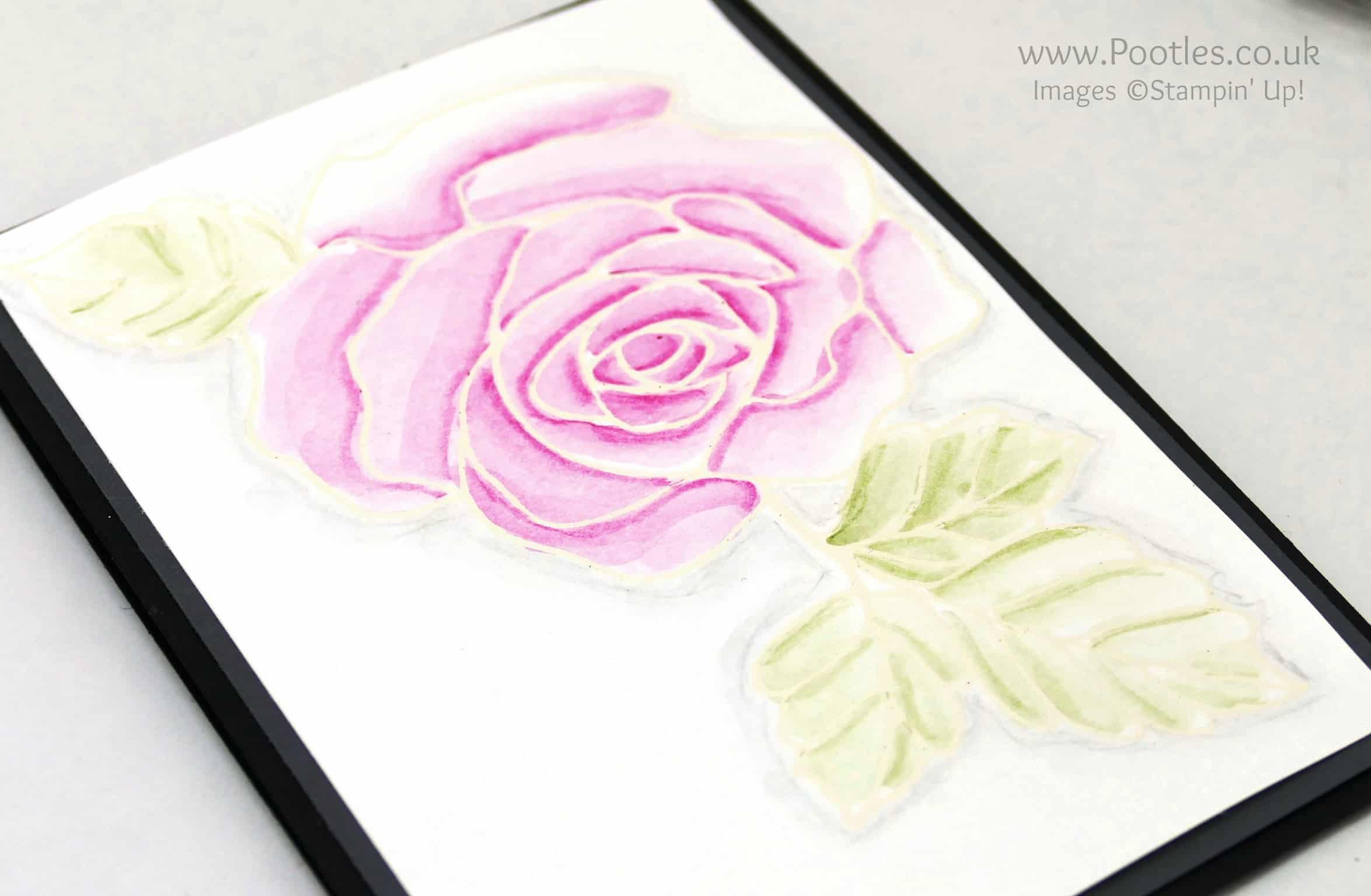Rose Wonder Heat Embossing and Watercolouring