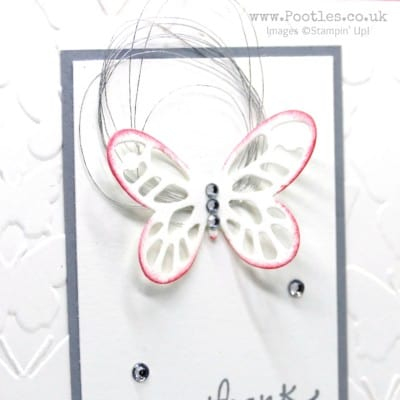 A Fluttering Bold Butterfly Flirty Flamingo!