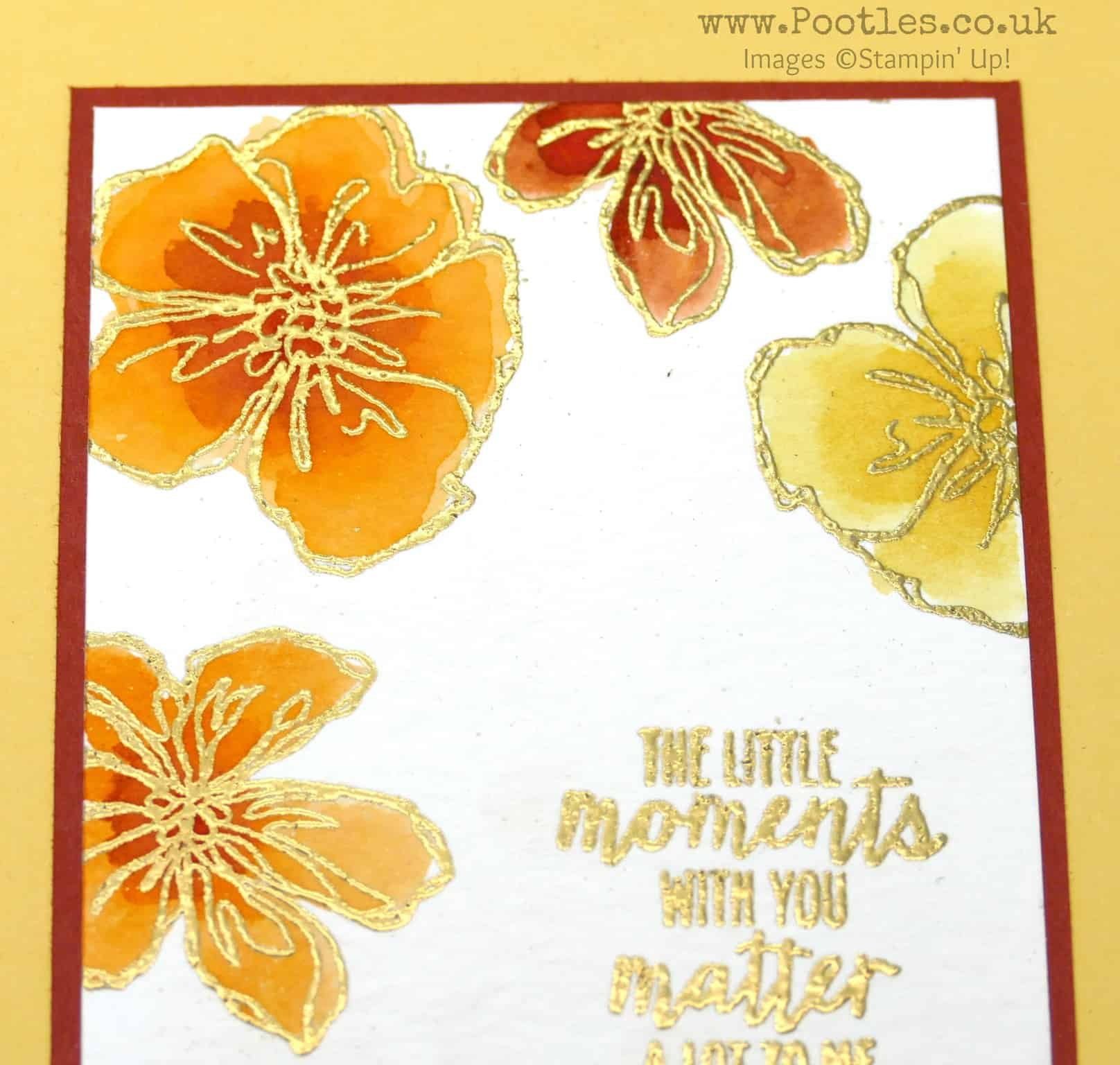Colour Your World Blog Hop – Penned & Painted With Gold Embossing
