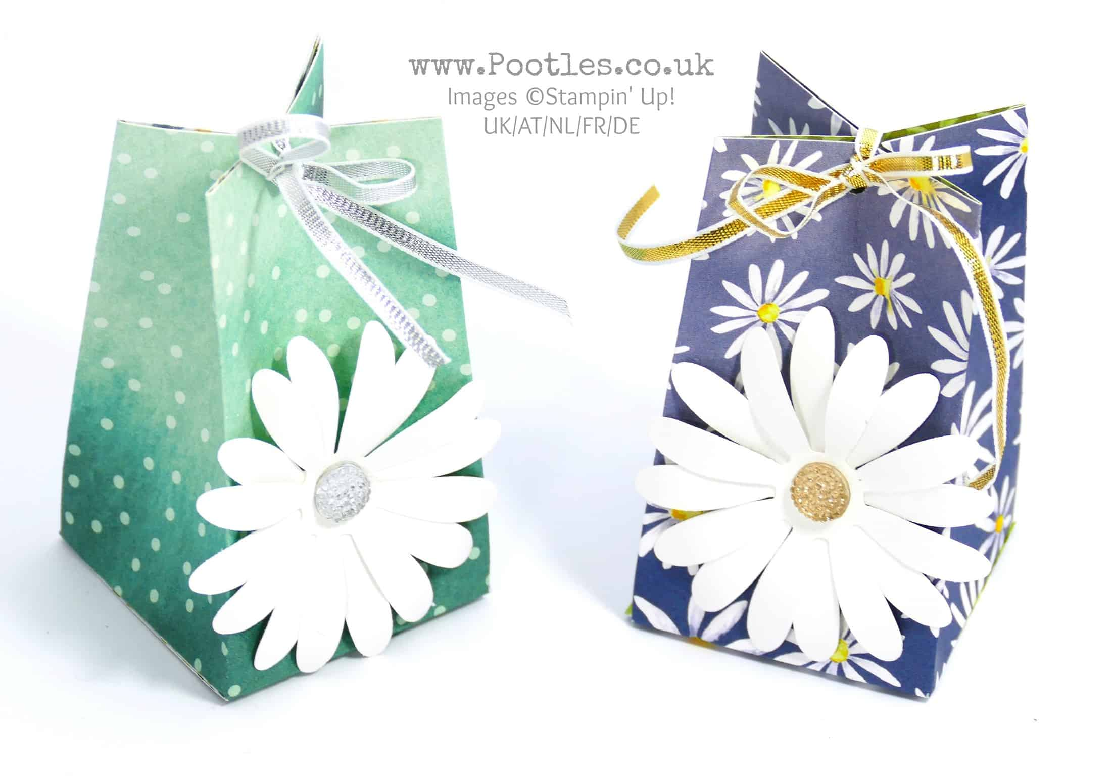 Big Daisy Small Bag! Using Stampin' Up! Delightful Daisy