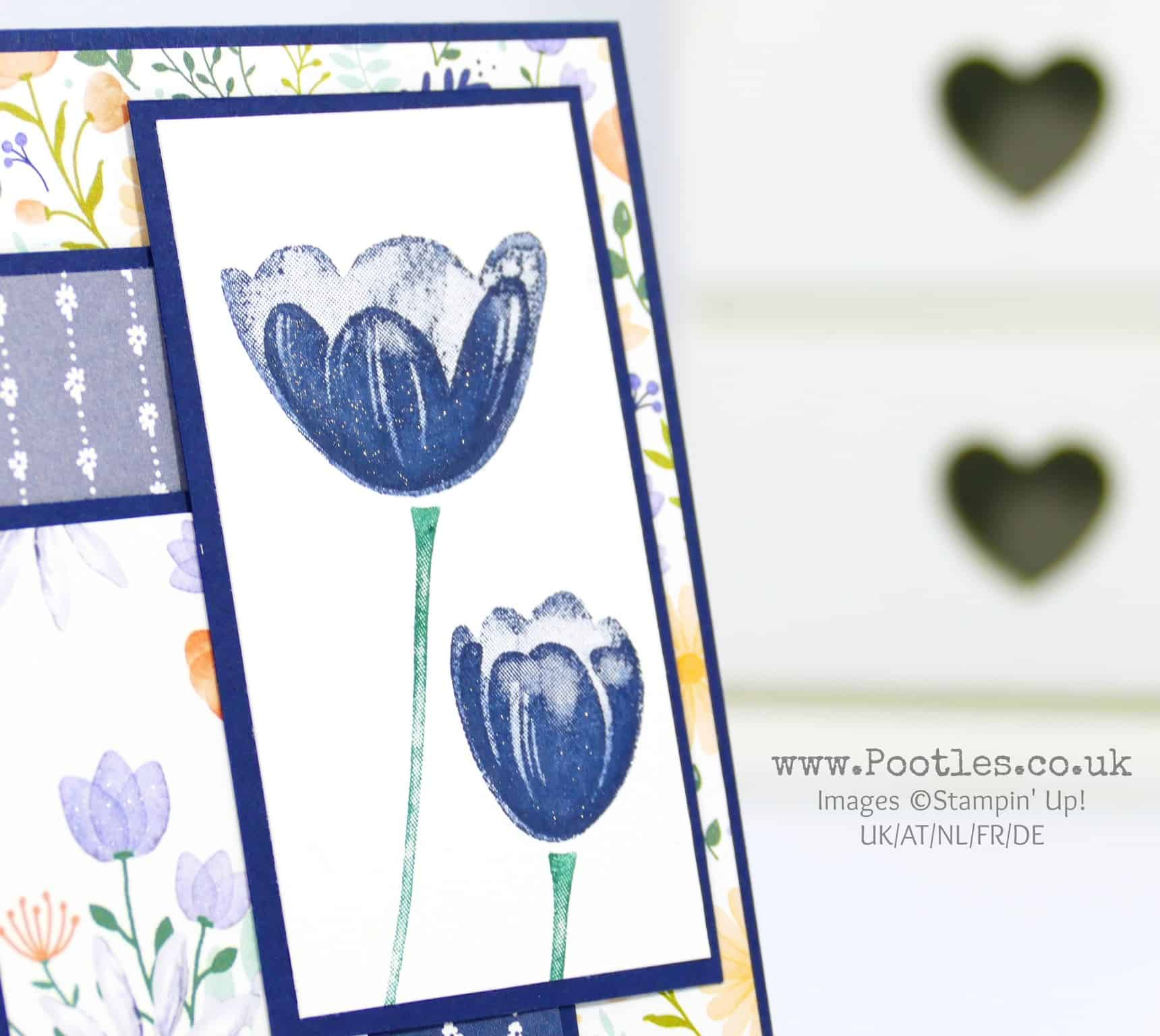 Tranquil Tulips – Scarily, this is my first share….