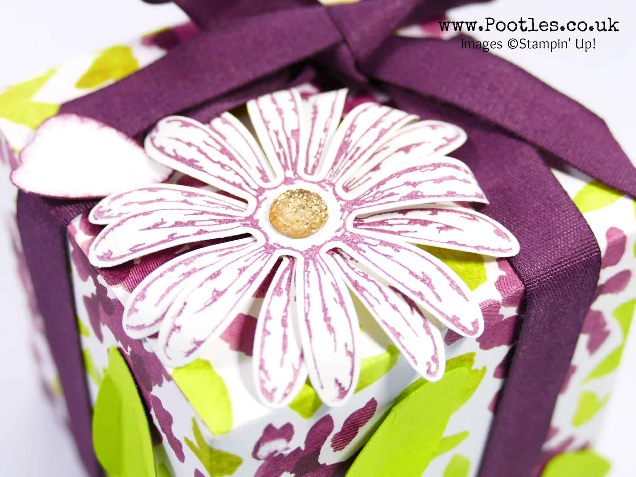 Daisy Delight How to Step Up Pretty Boxes