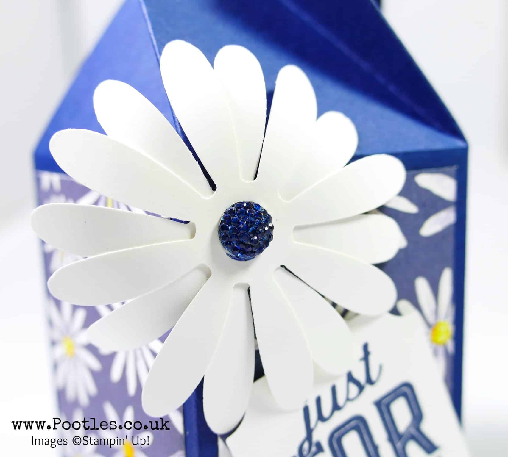 Twist & Close Easy Delightful Daisy Box