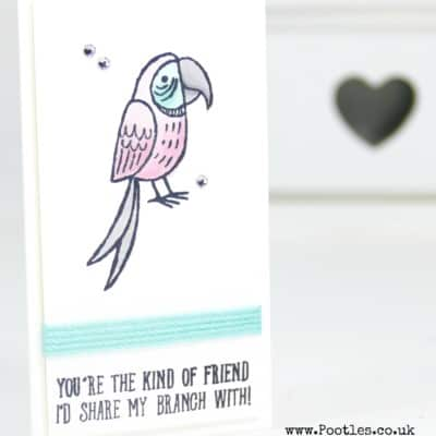 Bird Banter and Blends on a Skinny Card!