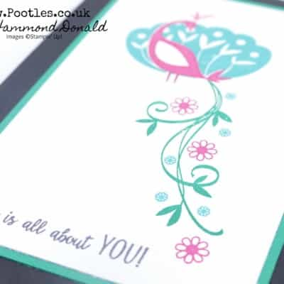 Beautiful Peacock Free Stamp Set and Clashing Colours!