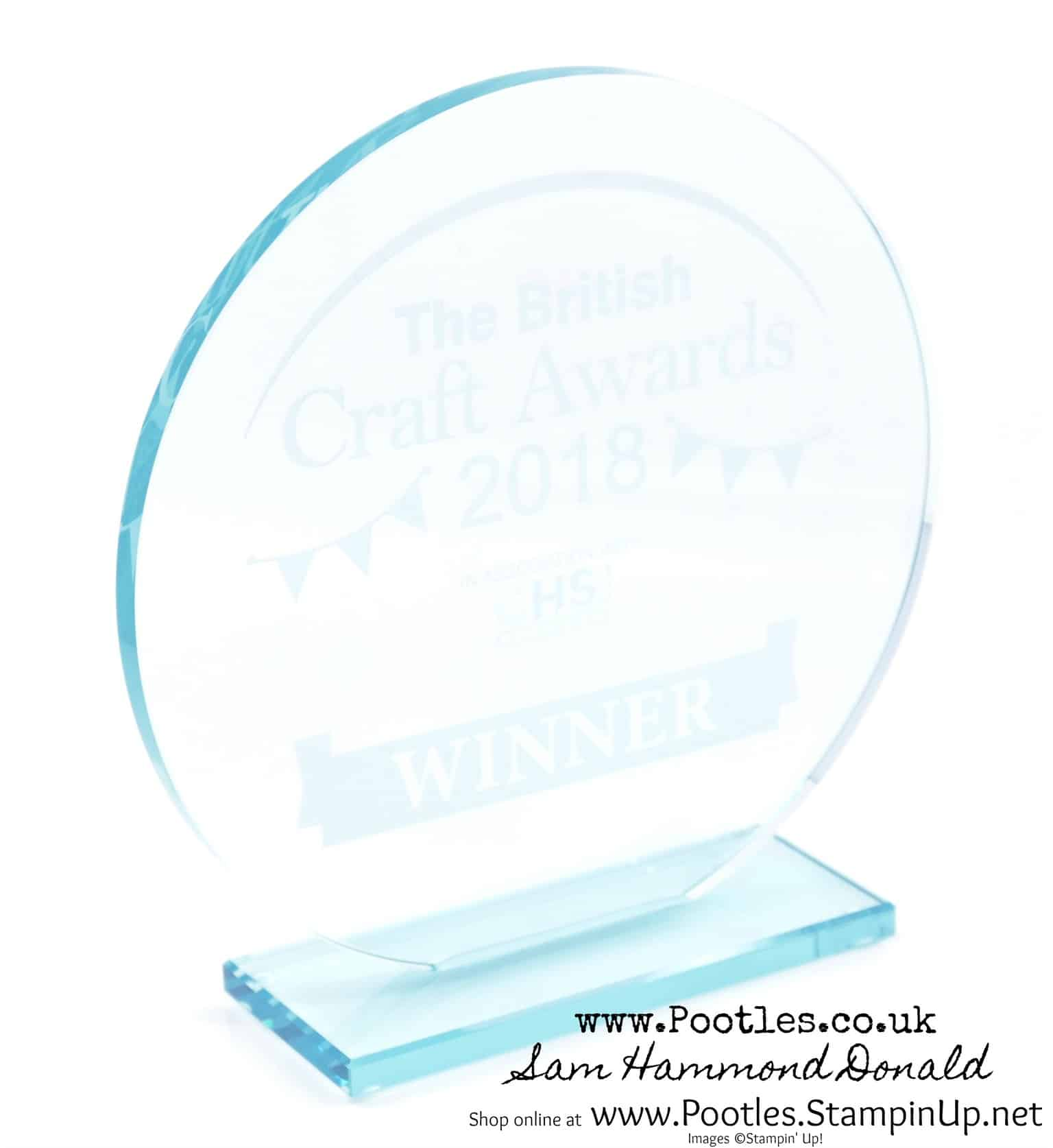 Papercraft Blog of the Year at the British Craft Awards. And I won!!!!