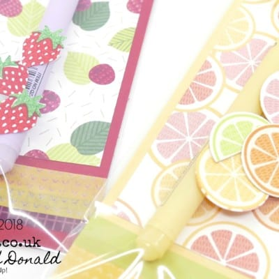 SpringWatch 2018 Kawaii Pen Tutti Frutti Sleeves