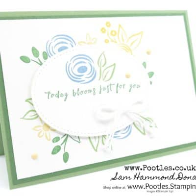A Soft Subtles Perennial Birthday non Birthday Card…AND Clearance Rack Update