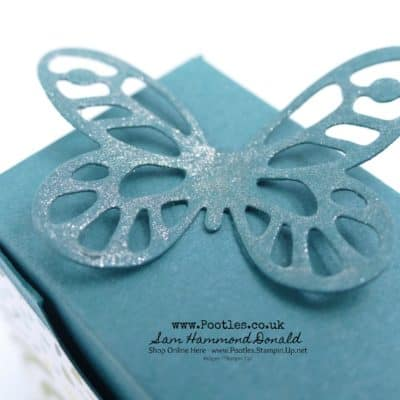 Bold Butterfly Box Tutorial using Stampin' Up! Delightful Daisy