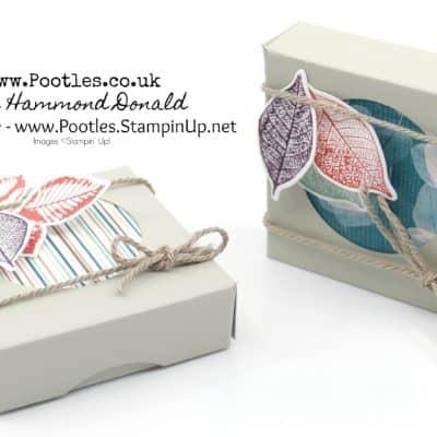Peep Hole Box using Stampin' Up! Nature's Poem