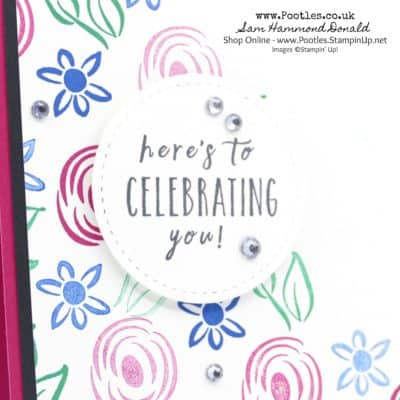 Perennial Birthday in New In Colours