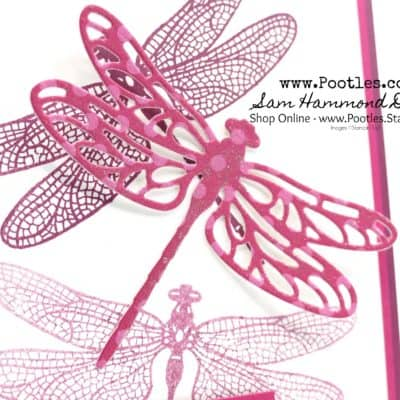 Dragonfly Dreams in Merry Merlot & Lovely Lipstick