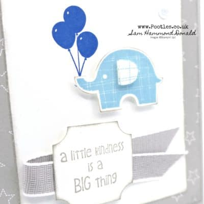 Little Elephant + Builder Punch and Darling Label Punch