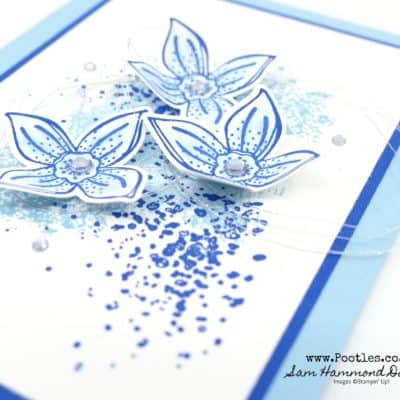Pop of Petals Facebook Live Tips with Artisan Textures