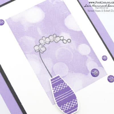 Varied Vases with Bokeh Dots in Beautiful New Purples