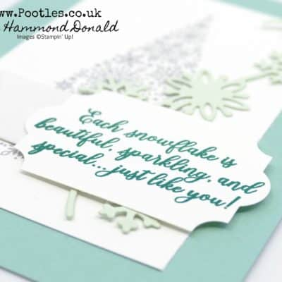Customer Thank You Cards using Limited Edition Snow is Glistening