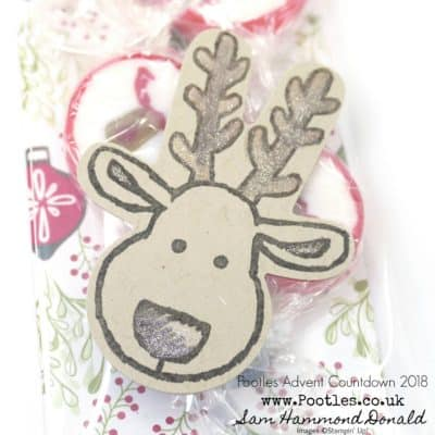 Pootles Advent Countdown 2018 #13 Reindeer Rock Sweetie Pouch