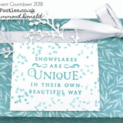 Pootles Advent Countdown 2018 #21 Frosted Florals Large Box Tutorial