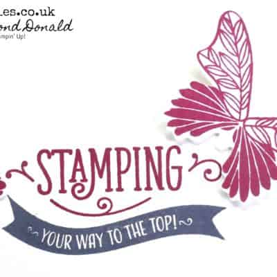 Stamping Your Way To The Top with Butterfly Gala