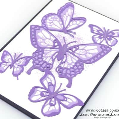 Beauty Abounds Butterfly Card in Purples