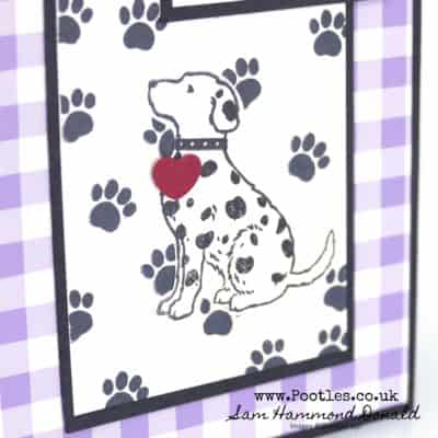 Happy Tails Dalmatian Checkered Doggy Card!