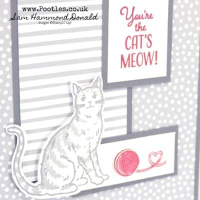 Nine Lives, Stamped & Punched Card for Cat Lovers