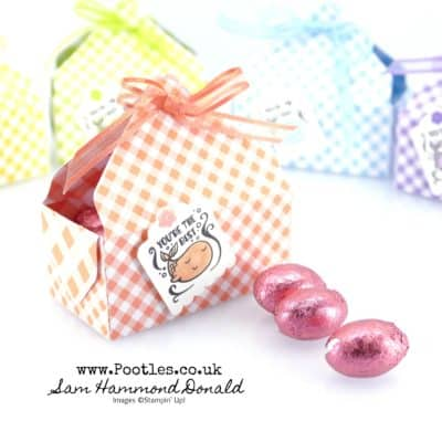 SpringWatch 2019 Gingham Gala Envelope Punch Board Easter Baskets