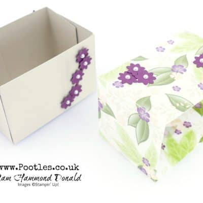 Floral Romance Vellum Wrap Box Tutorial
