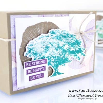 Rooted In Nature Box
