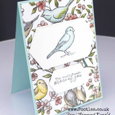 Bird Ballad Customer Thank You Cards