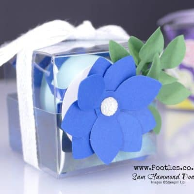 Sneak Peek Perennial Essence Clear Box