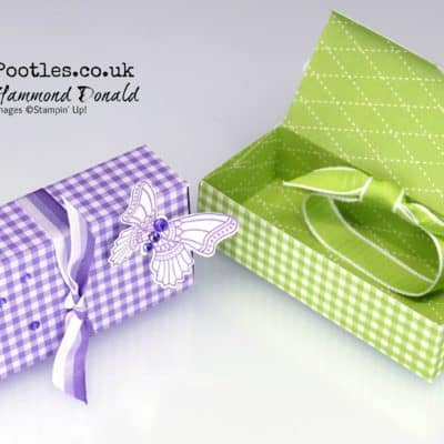 Gingham Butterfly Gala Picnic Lipped Box