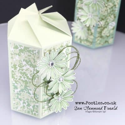 Twist N Close Garden Daisy Lane Box Tutorial