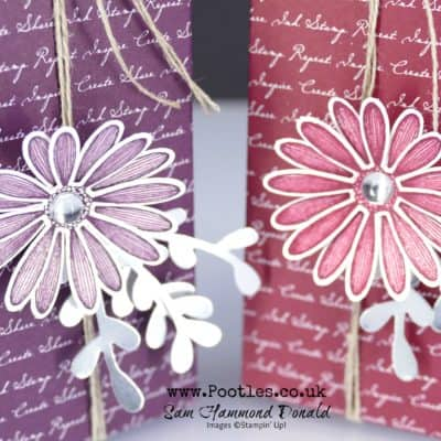 6×6 Daisy Lane Delightful Tag Topped Favour