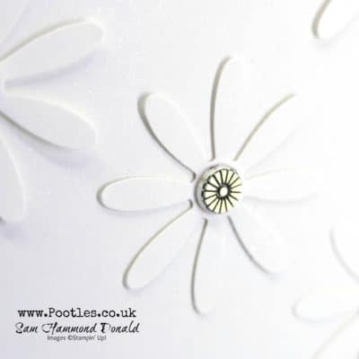 Daisy Punch and stunning Shimmer Paper