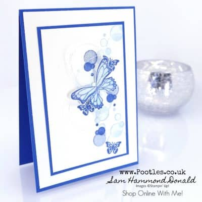 Beauty Abounds with Butterfly Duet Punch