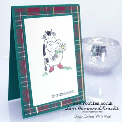 Over The Moon with Wrapped in Plaid Designer Series Paper