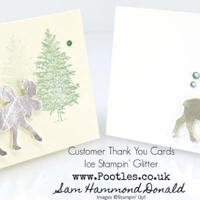 Merry Moose Ice Glitter Customer Thank You Cards
