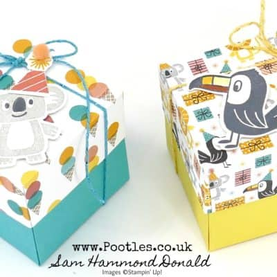 Springwatch 2020 #10 Birthday Bonanza Toucan Box