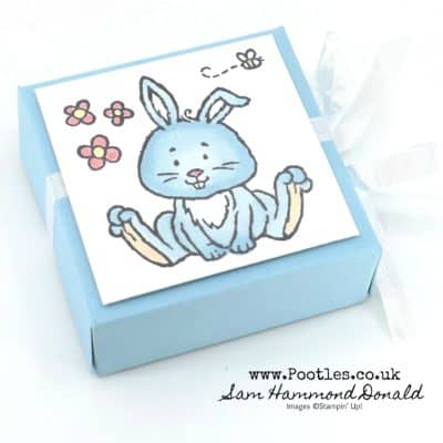 Springwatch 2020 #8 Welcome Easter Blue Bunny Box