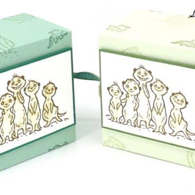 The Gang's All Meer Boy Box Tutorial