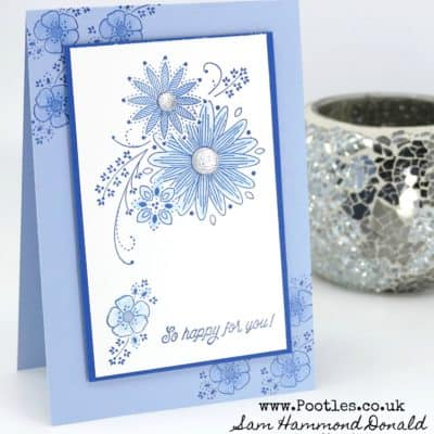 A Little Lace with 2 Blues and a Wink of Stella!