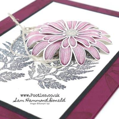 Beautiful Daisy Lane Card, quick style!