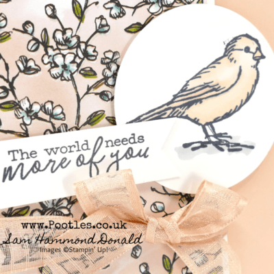 Free as a Bird with Stampin' Blends Alcohol Markers